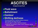 ascites intraperitoneal fluid