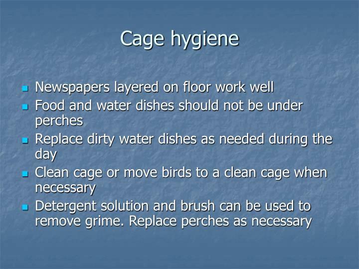 Cage hygiene