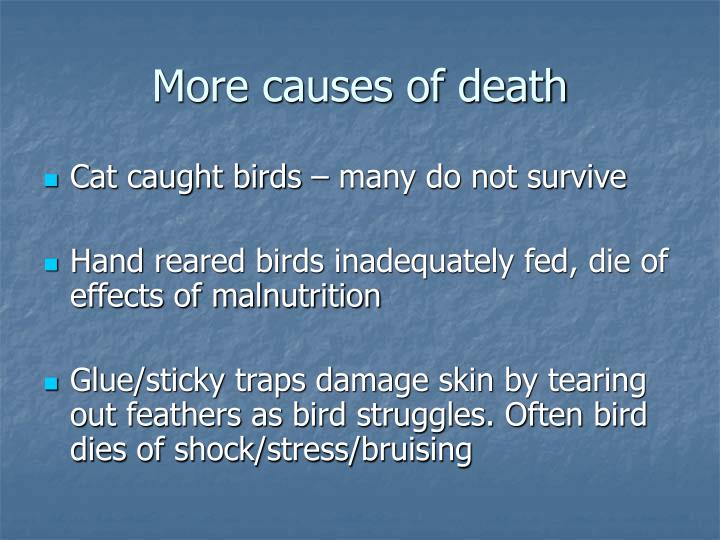 More causes of death