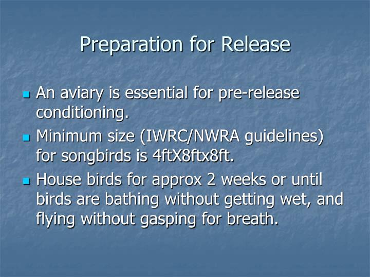 Preparation for Release
