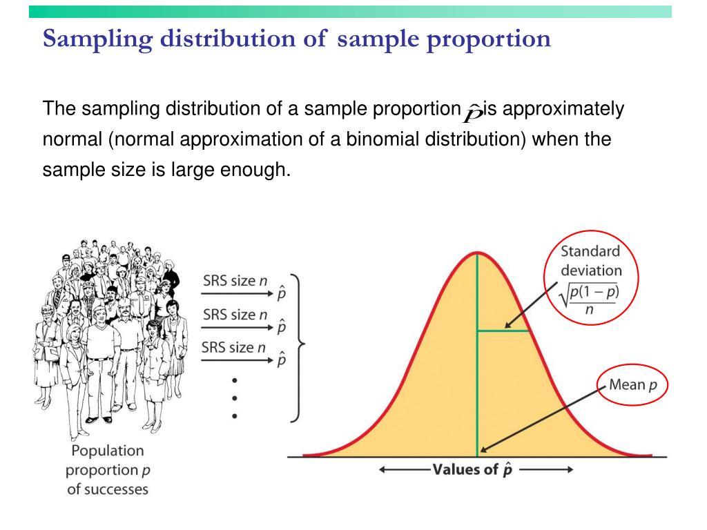 Sampling distribution of sample proportion