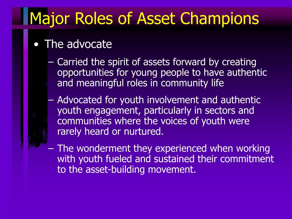 Major Roles of Asset Champions