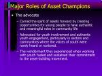 major roles of asset champions34