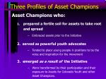 three profiles of asset champions