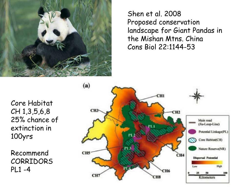 Shen et al. 2008