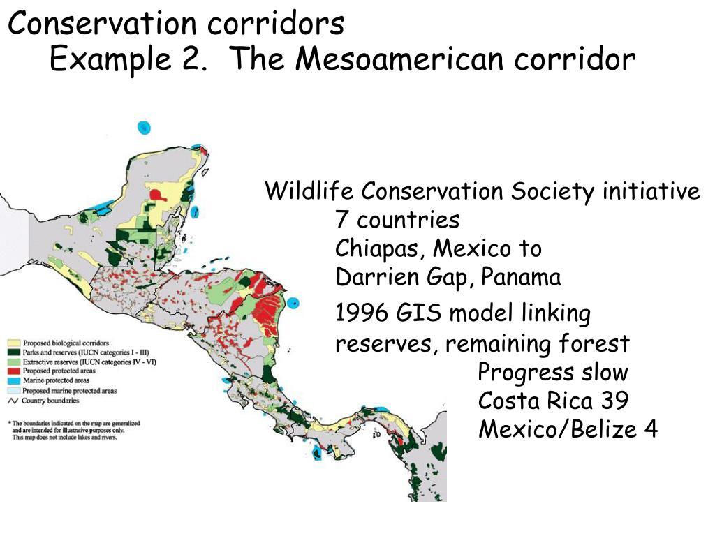Conservation corridors