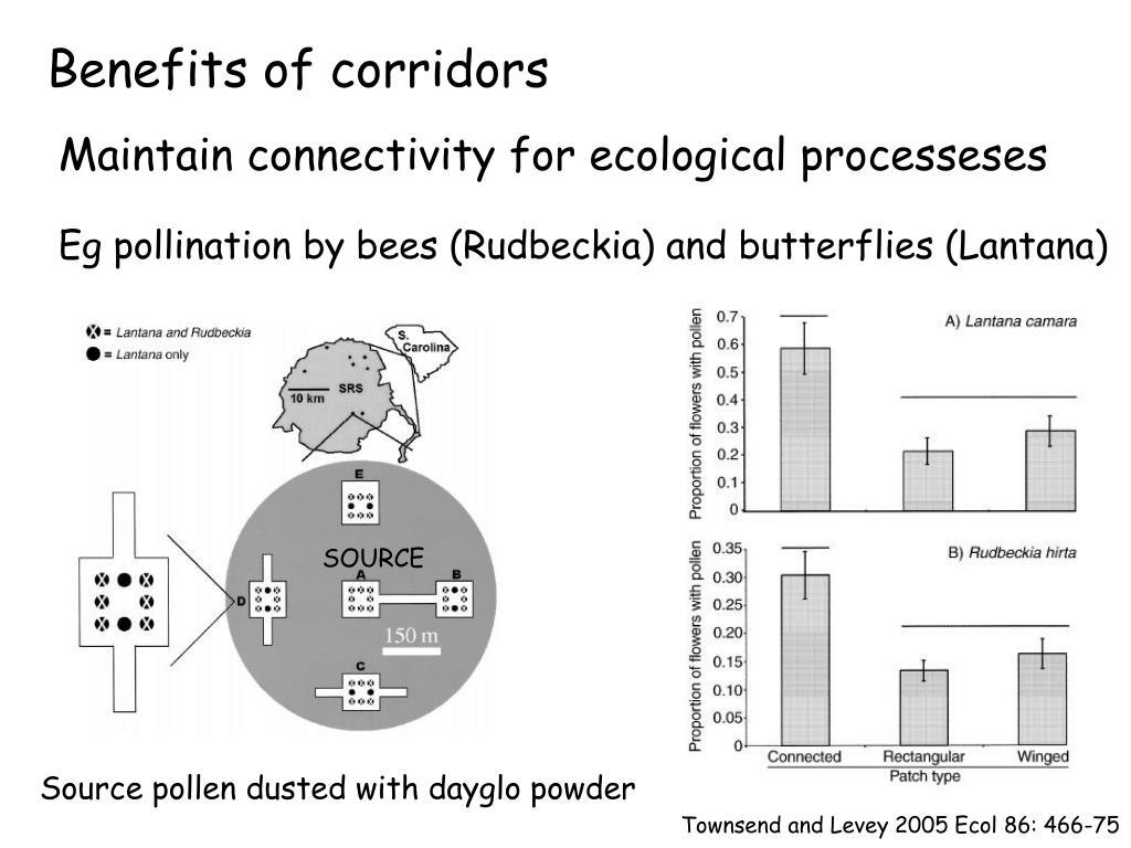 Benefits of corridors