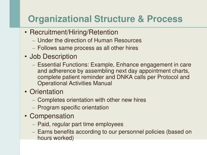 Organizational Structure & Process