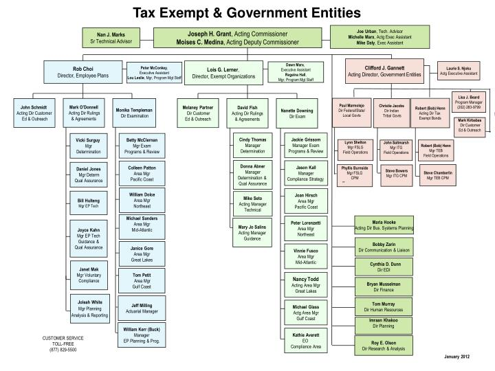 Tax Exempt & Government Entities