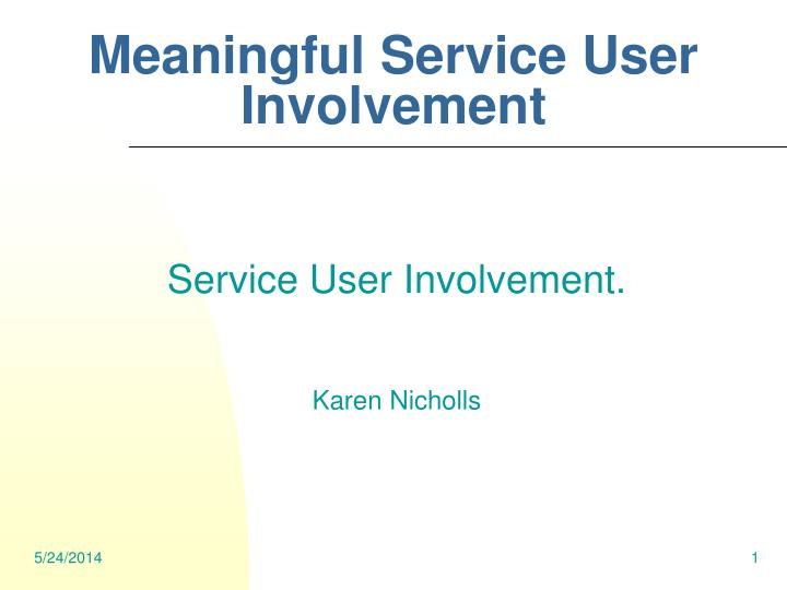 meaningful service user involvement n.