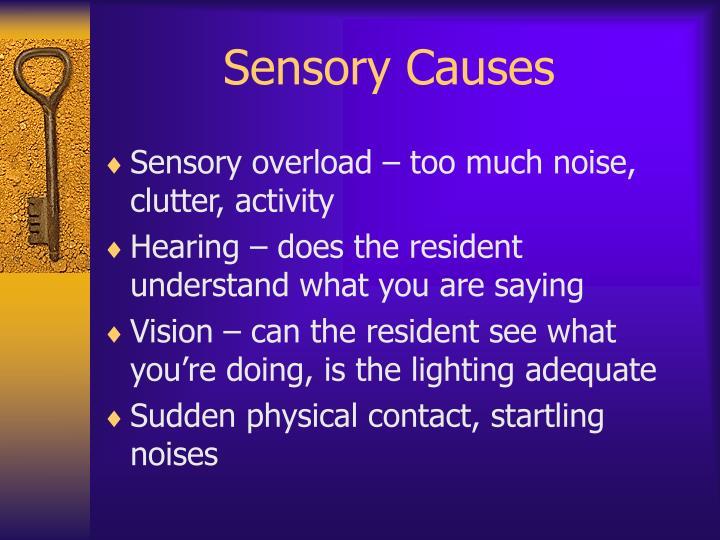 Sensory Causes