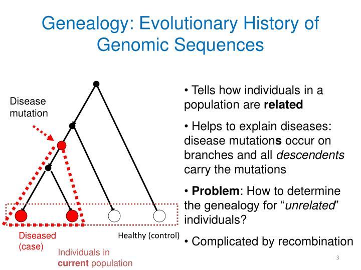 Genealogy evolutionary history of genomic sequences