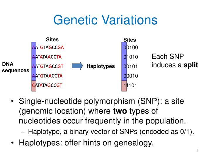 Genetic variations
