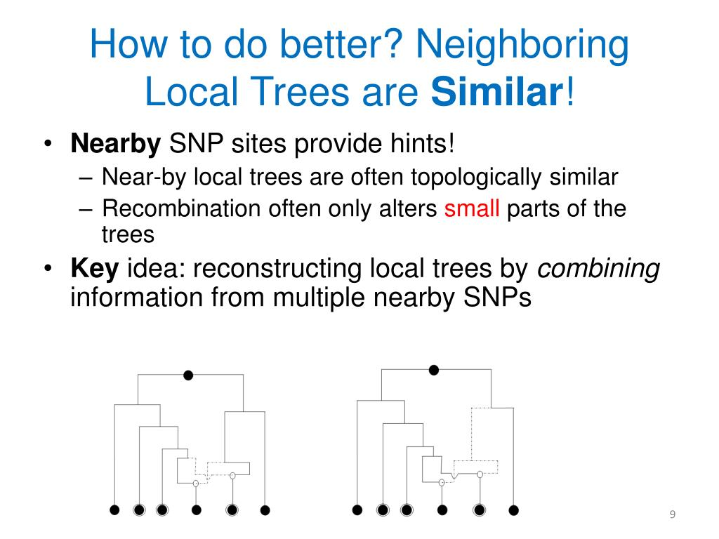 How to do better? Neighboring Local Trees are