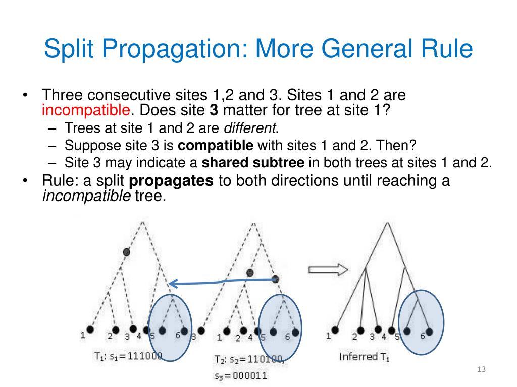 Split Propagation: More General Rule