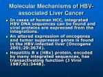 molecular mechanisms of hbv associated liver cancer