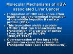 molecular mechanisms of hbv associated liver cancer1