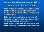 molecular mechanisms of hbv associated liver cancer2