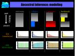 ancestral inference modeling