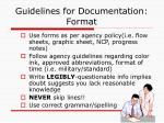 guidelines for documentation format
