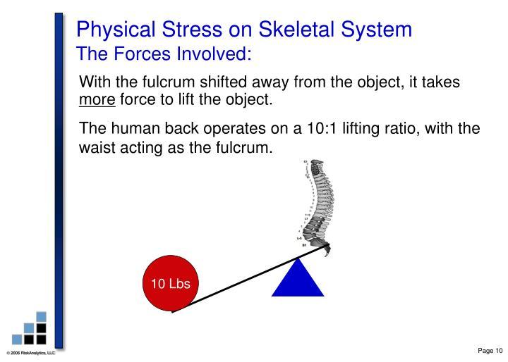 Physical Stress on Skeletal System