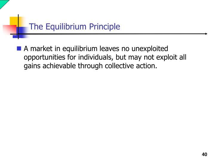 The Equilibrium Principle