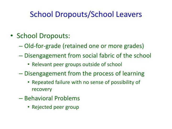 School Dropouts/School Leavers