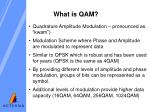 what is qam