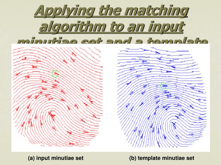 Applying the matching algorithm to an input minutiae set and a template