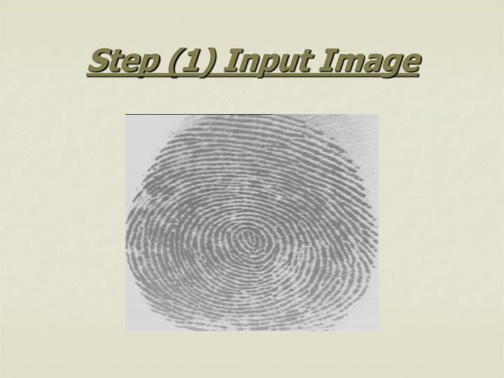 Step (1) Input Image