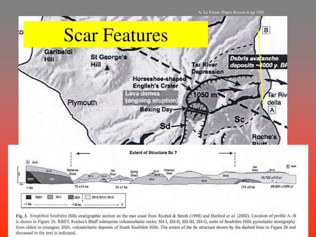 Scar Features