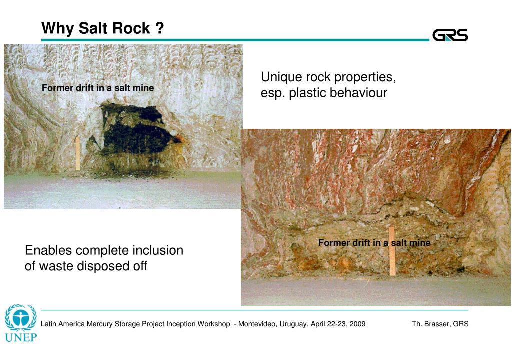 Why Salt Rock ?