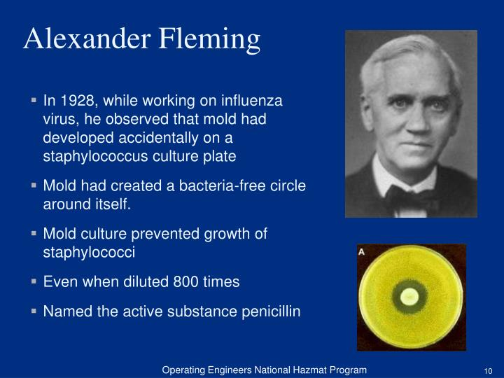 In 1928, while working on influenza virus, he observed that mold had developed accidentally on a staphylococcus culture plate