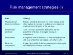 risk management strategies i