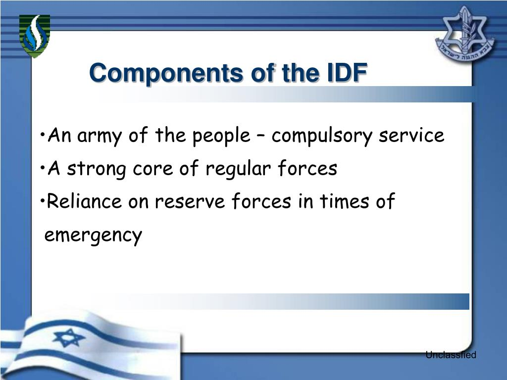 Components of the IDF