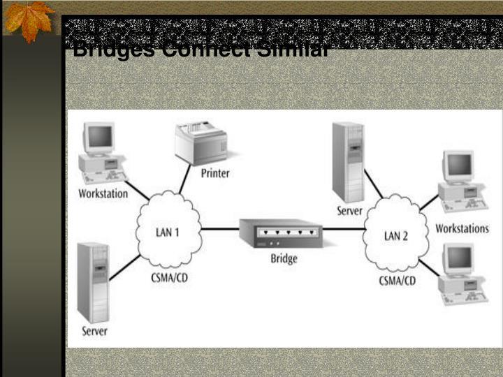 Bridges Connect Similar