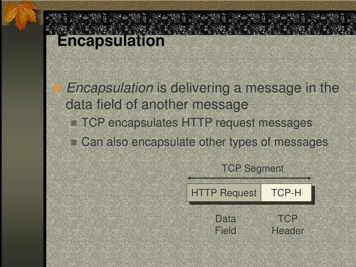 Encapsulation