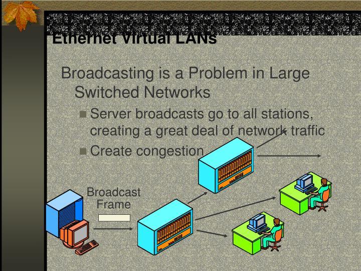 Ethernet Virtual LANs