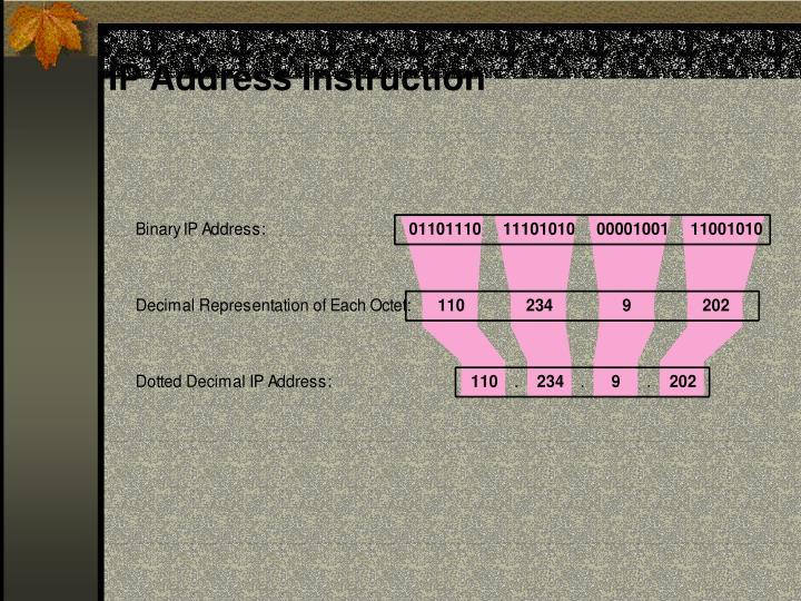 IP Address Instruction