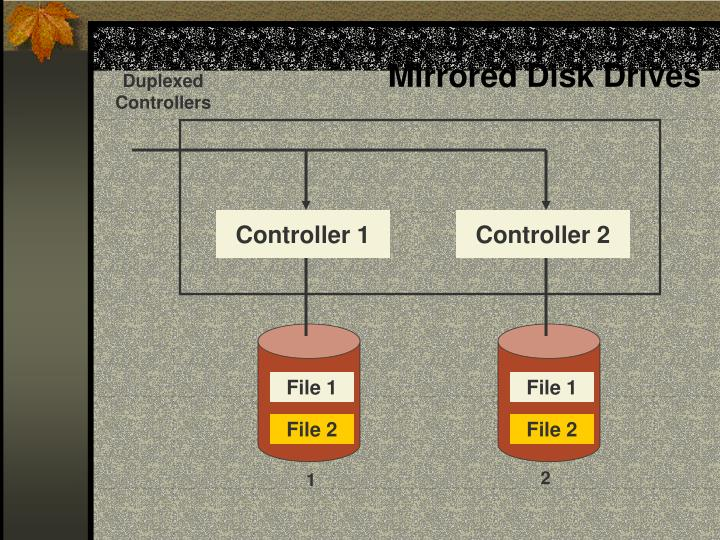 Mirrored Disk Drives