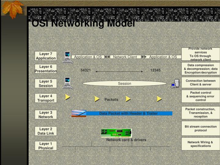 OSI Networking Model