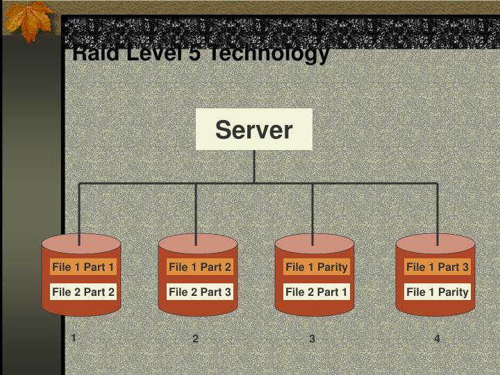 Raid Level 5 Technology