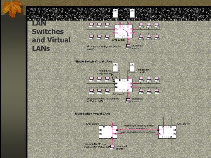 LAN Switches and Virtual LANs