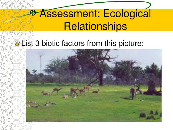 Assessment: Ecological Relationships