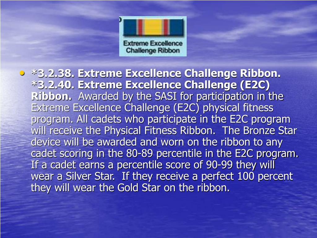 *3.2.38. Extreme Excellence Challenge Ribbon.