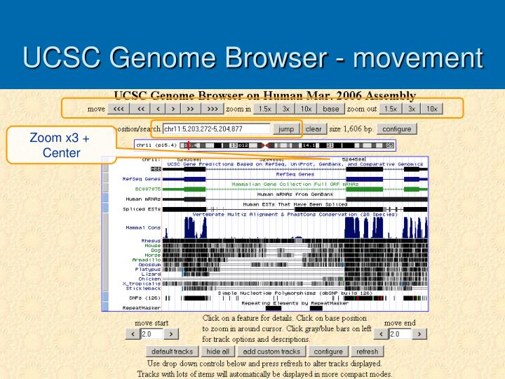 UCSC Genome Browser - movement