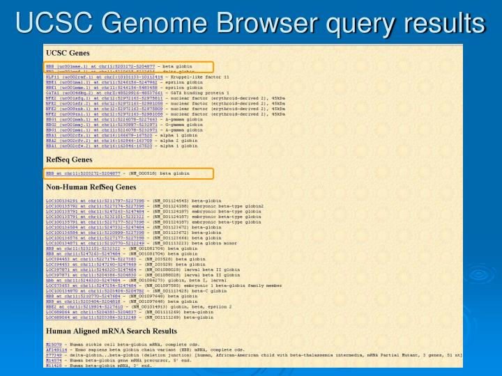 UCSC Genome Browser query results