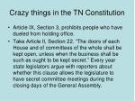crazy things in the tn constitution