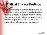 political efficacy feelings