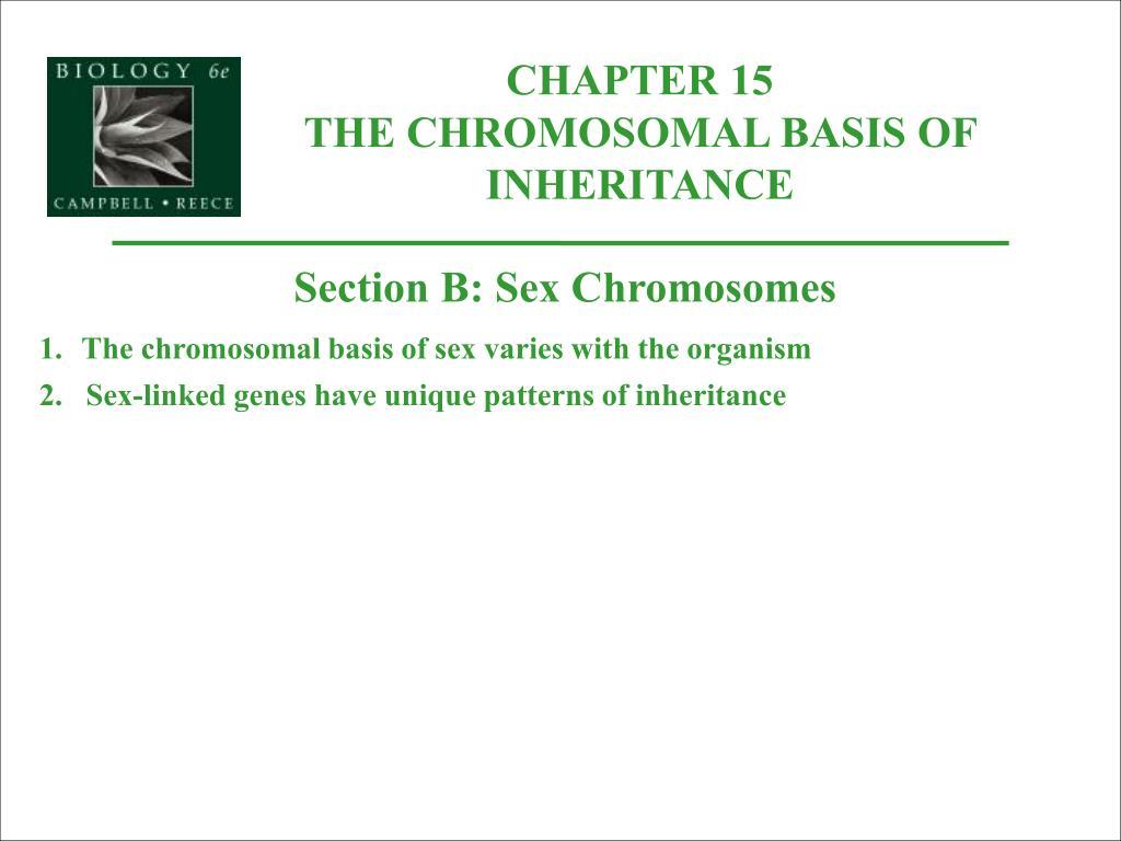 chromosomal basis of sex determination ppt in Manchester,